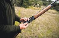 GNR deteve 7 caçadores em Amares e Guimarães e apreende quatro tordos…