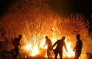 Tribunal de Braga julga incendiários que atearam fogos em Amares e Ponte de Lima