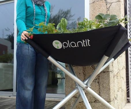 Ex-aluna da UMinho lança App que ensina a cultivar produtos biológicos em casa; gratuita para iOS e Android