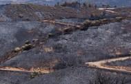 Deputados visitam esta quinta-feira o Parque Nacional da Peneda-Gerês com fogos florestais na agenda