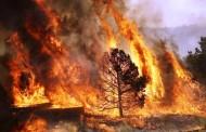 Mais de uma dezena de fogos activos no distrito de Braga