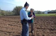 GNR reforça patrulhamento nas explorações agrícolas