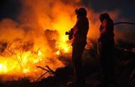 PJ deteve suspeito de atear fogo florestal em Barcelos