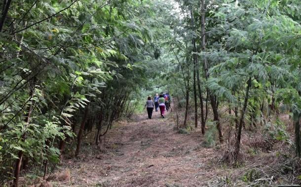 'Aventuras pelo Ambiente' deram a conhecer Trilho dos Solares de Braga