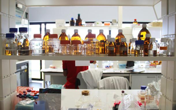Cientista portuguesa descobre células resistentes ao HIV