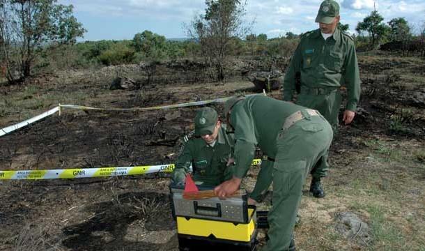 Dados da GNR indicam que 20 % dos fogos florestais tiveram origem intencional