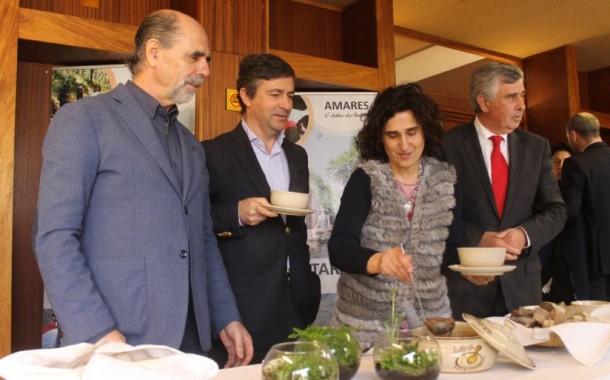 Festival de Papas de Sarrabulho de Amares espera atingir os 25 mil visitantes e um volume de negócio de meio milhão de euros