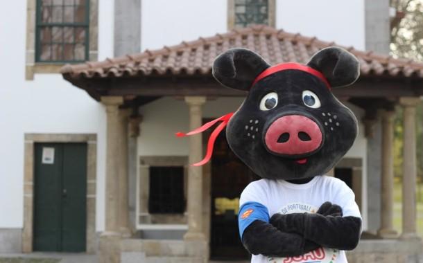 São João de Braga põe Porco Preto a saltar obstáculos