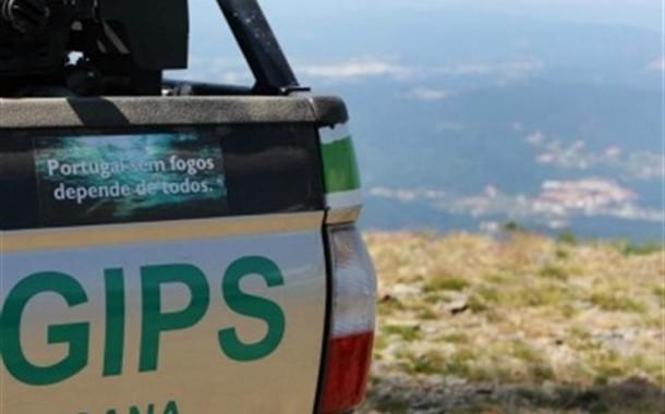 GNR reforçou patrulhamento das florestas