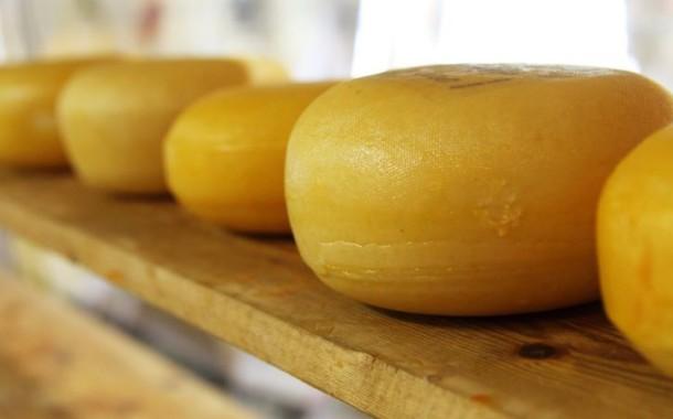 Alguns tipos de queijo podem aumentar imunidade e dar anos de vida