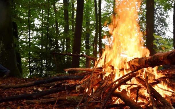 Governo apela a que não se façam queimadas nos próximos dias