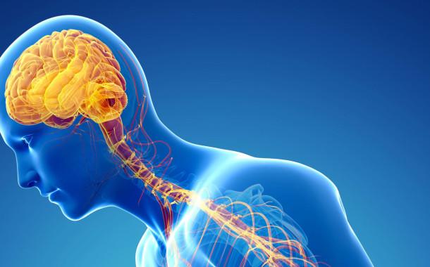 Investigadores da Universidade do Porto descobrem molécula que retarda doença de Parkinson