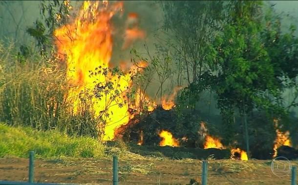 Queimadas proibidas devido ao aumento do risco de incêndio