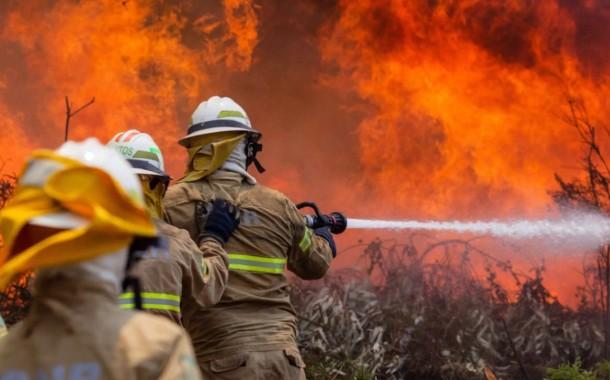 INCÊNDIOS FLORESTAIS: Governo decreta Situação de Alerta