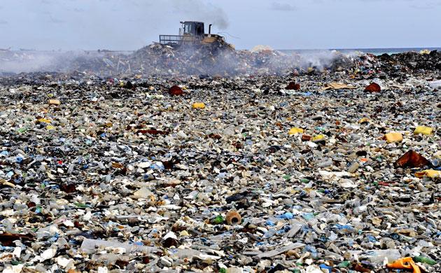 """Marcelo pede """"mudança radical de hábitos de vida"""" no Dia Mundial do Ambiente"""