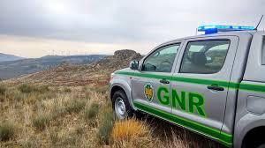 GNR detém em flagrante quatro pessoas por incêndio florestal