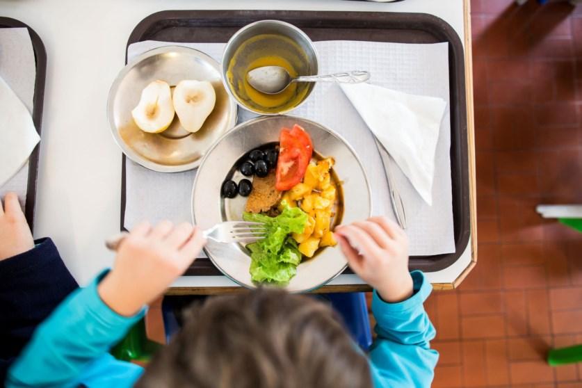 Pais e professores avaliam qualidade das refeições escolares em Famalicão