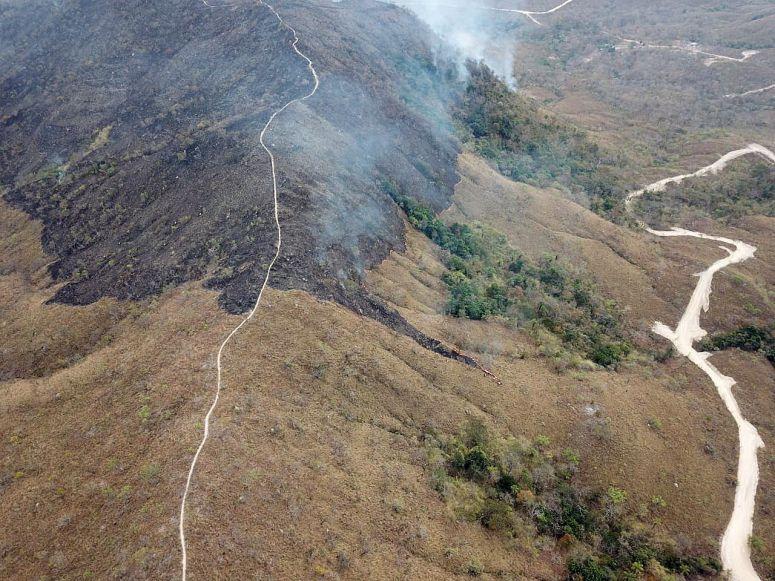 Desflorestação da Amazónia aumentou 80% em Setembro