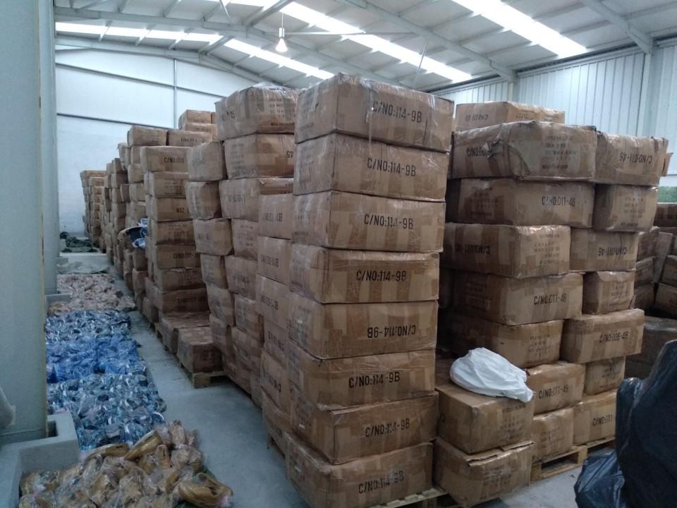 Mega-operação da ASAE apreende cinco milhões de euros em artigos contrafeitos em Barcelos e Famalicão