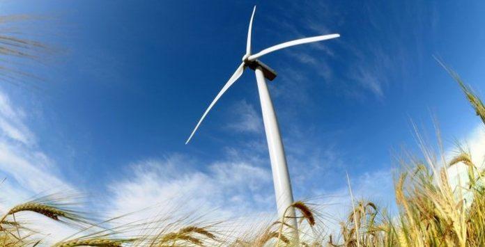 Mais de metade da electricidade consumida em 2019 veio de fontes renováveis