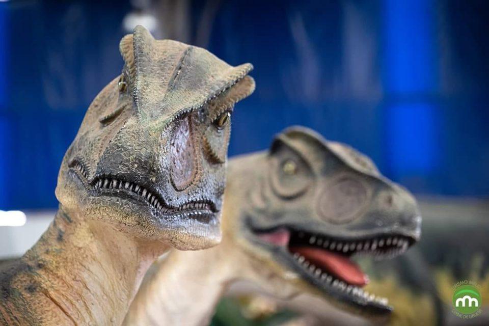 Dinossauros estão a chegar a Braga