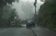 Chuva e granizo causam inundações e queda de árvores na Póvoa de Lanhoso