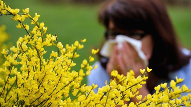 Farmácias lançam campanha para ajudar a distinguir alergia e constipação