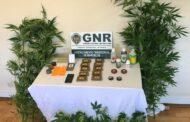 GNR detém suspeito de tráfico de droga em Barcelos