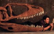 Descoberta nova espécie de dinossauro carnívoro na região Oeste