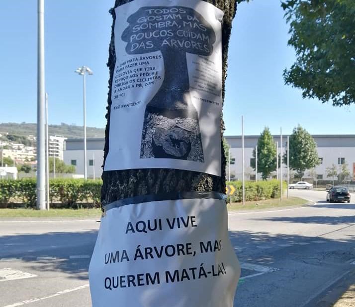 PSP identifica activistas contra abate de árvores em Braga