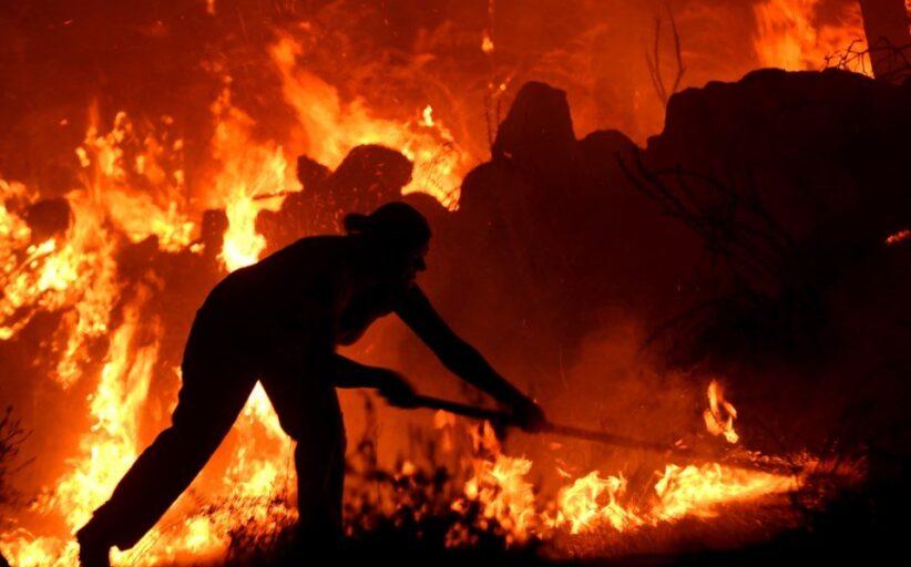 Arderam mais de 24 mil hectares até Julho