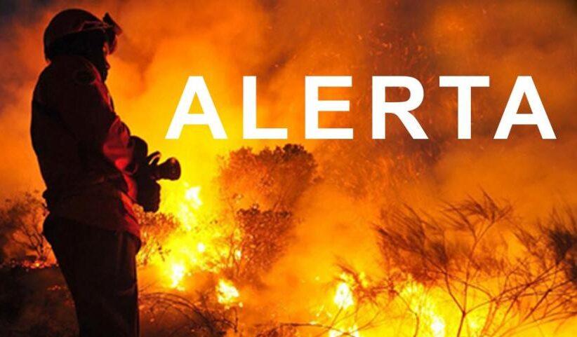 Braga e Viana do Castelo com risco máximo de incêndio. Máximas de até 39 graus