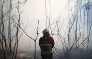Arcos de Valdevez reclama mais policiamento da floresta e helicóptero. PJ instala vídeo-vigilância