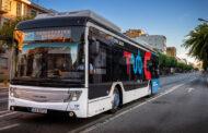 Transportes Urbanos de Braga abrem candidaturas para motoristas