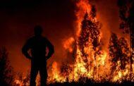 Libertados sob caução suspeitos de causar incêndio em Ponte de Lima