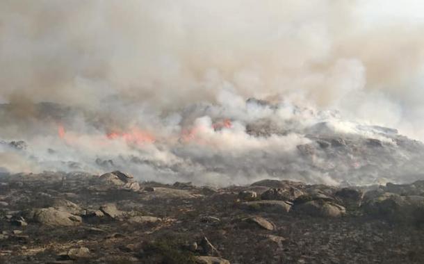 Mais de 160 operacionais e sete meios aéreos combatem fogo em Caminha