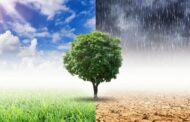 Universidade do Minho apresenta 'app' que alerta agricultores sobre mudanças climáticas