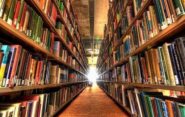 CIM Alto Minho cria catálogo colectivo das bibliotecas públicas municipais do Alto Minho com 300 mil registos