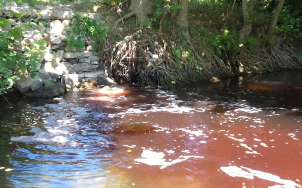 Comissão do Ambiente aprova audições sobre rio Vizela