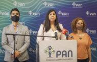 PAN anuncia apoio à candidatura de Ana Gomes à Presidência