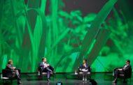 Braga oficializa candidatura a Capital Europeia da Cultura 2027 com lançamento da instalação 'Concerto para 2027 plantas'