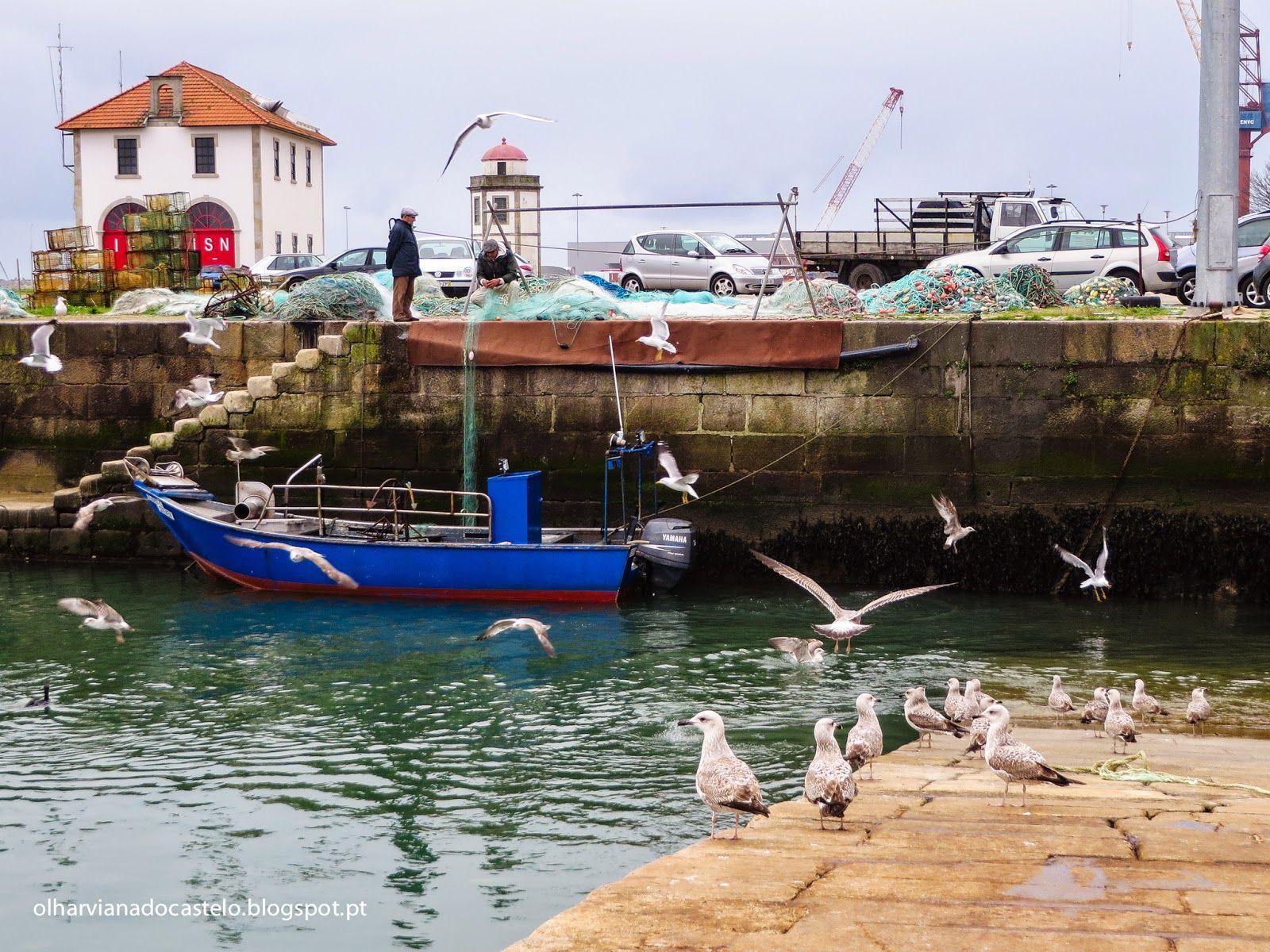 BE questiona o Governo sobre dragagens no porto pesca de Viana do Castelo