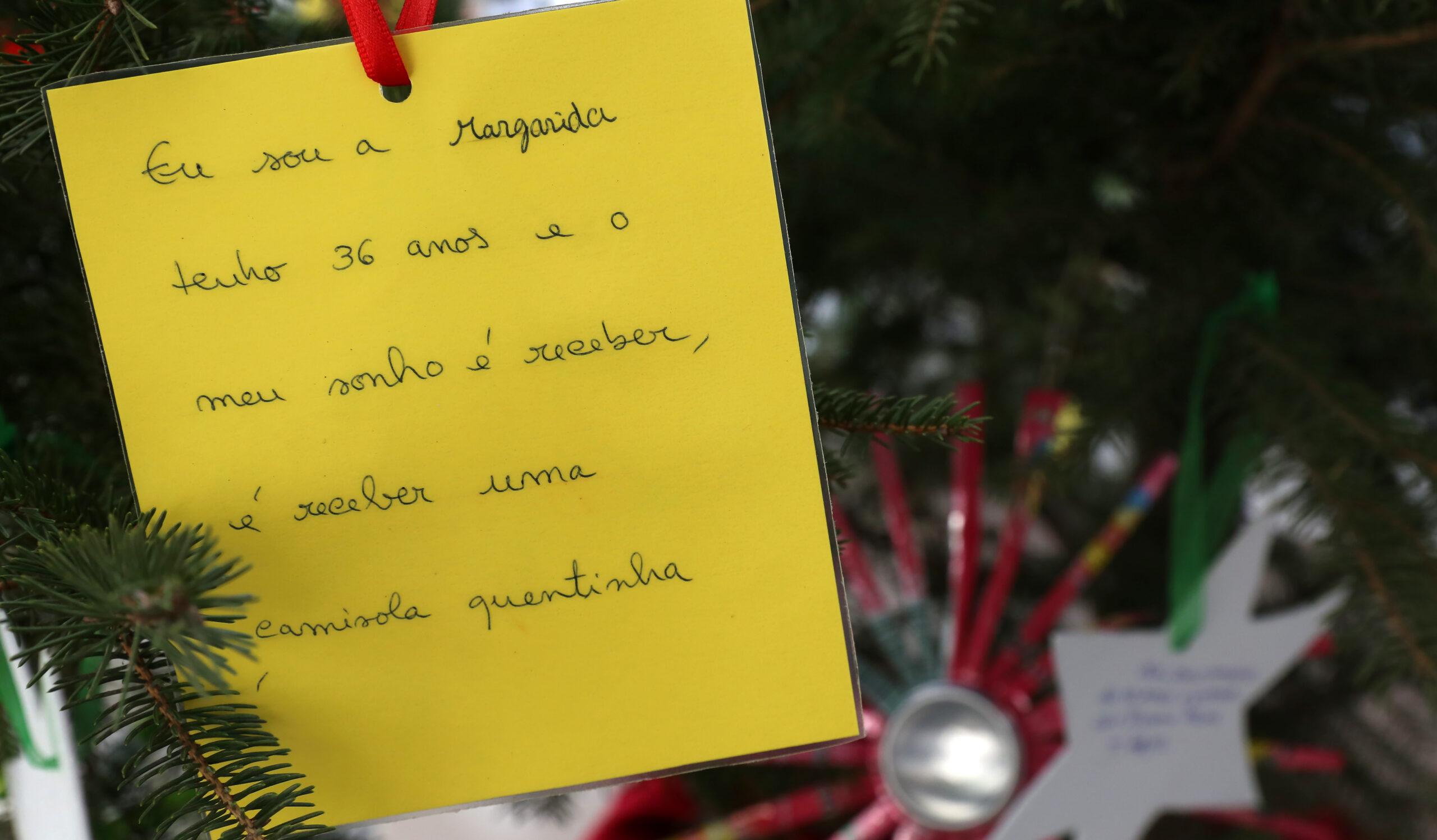 Árvore dos Sonhos alegra Natal de utentes de cinco instituições de Braga