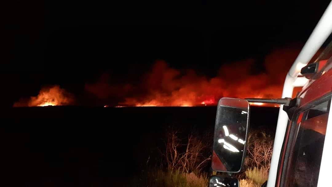 """Montalegre fala em """"situação de calamidade"""" com média de 10 fogos rurais/dia"""