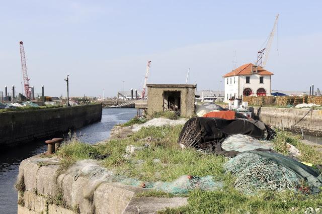 """Fotos de blogue obrigam APDL a """"devolver dignidade"""" ao degradado porto de pesca de Viana do Castelo"""