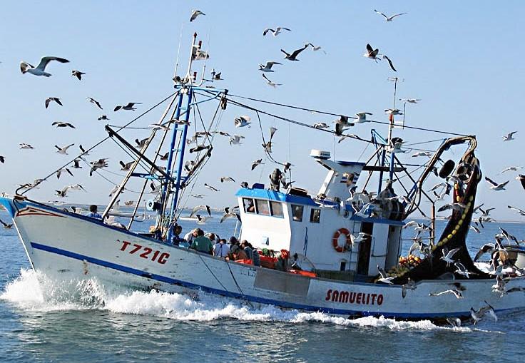 """Pescadores do Norte param actividade esta quarta-feira em protesto contra """"fiscalizações excessivas"""""""