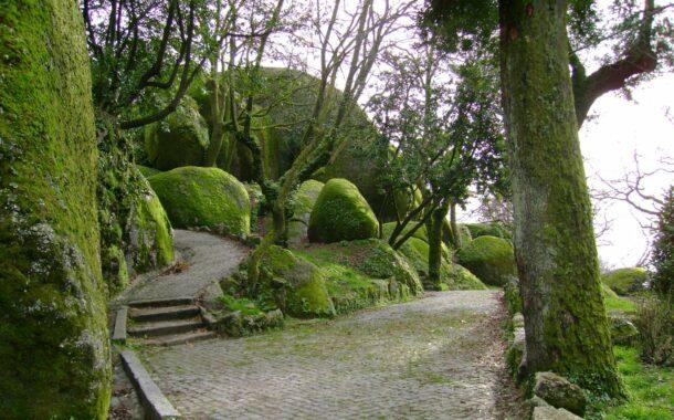 Norte e Centro criam 12 novas rotas turísticas por jardins históricos