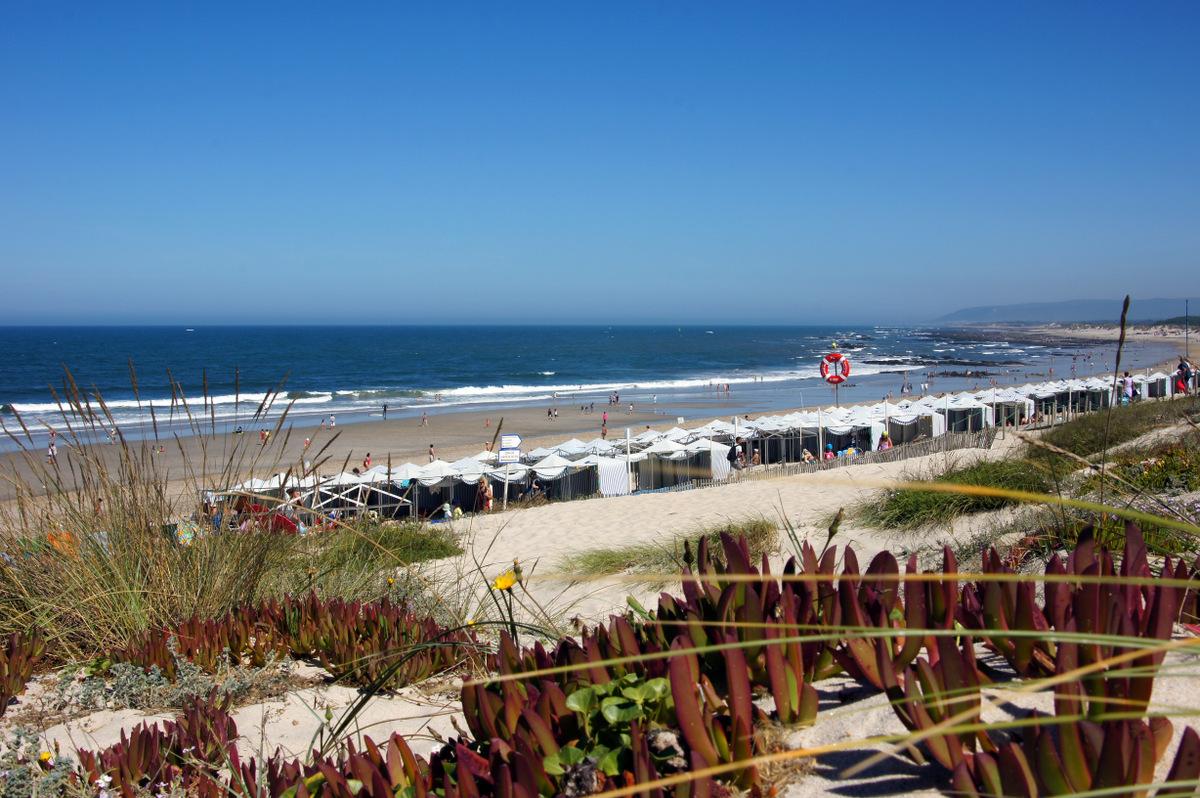 Esposende tem seis praias com 'Qualidade de Ouro'