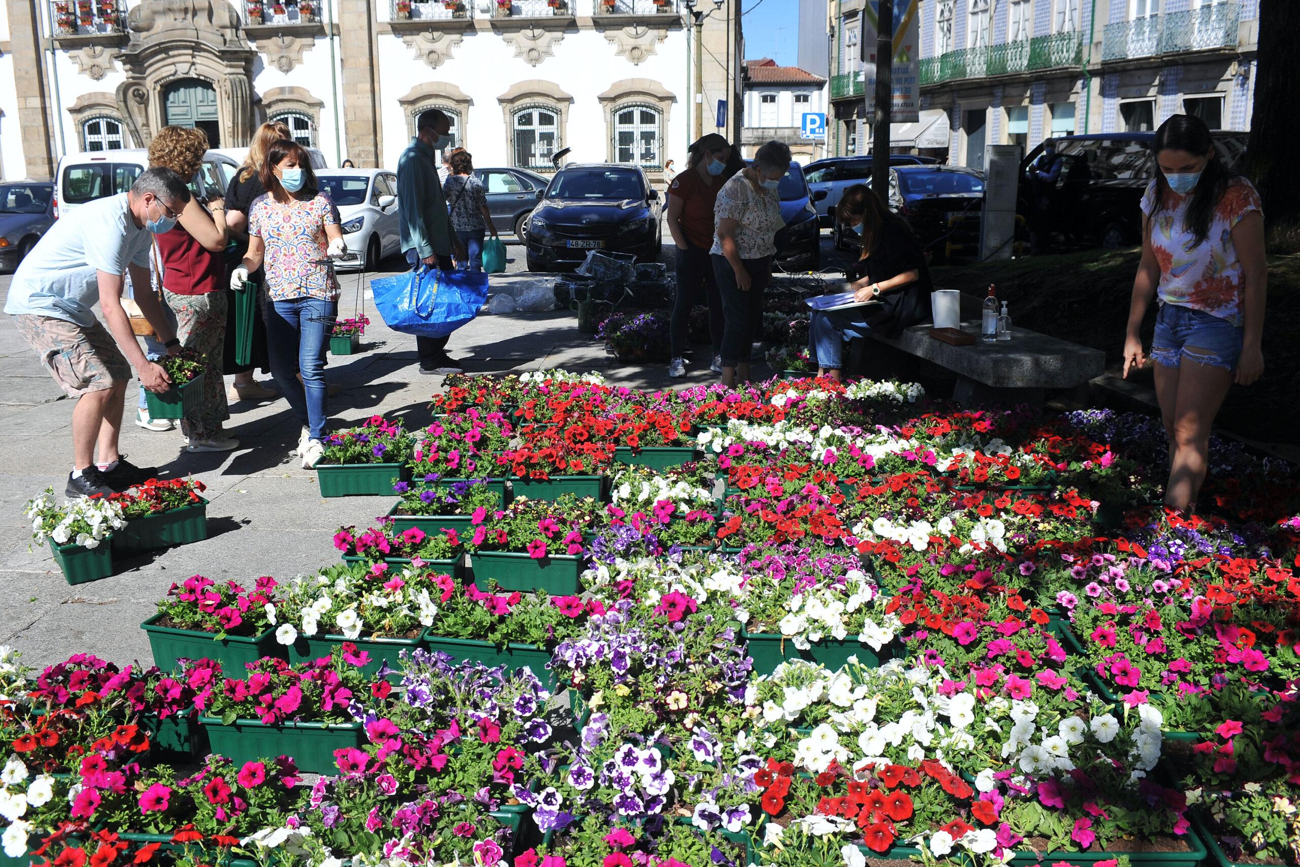 Meio milhar de floreiras embeleza centro histórico da cidade