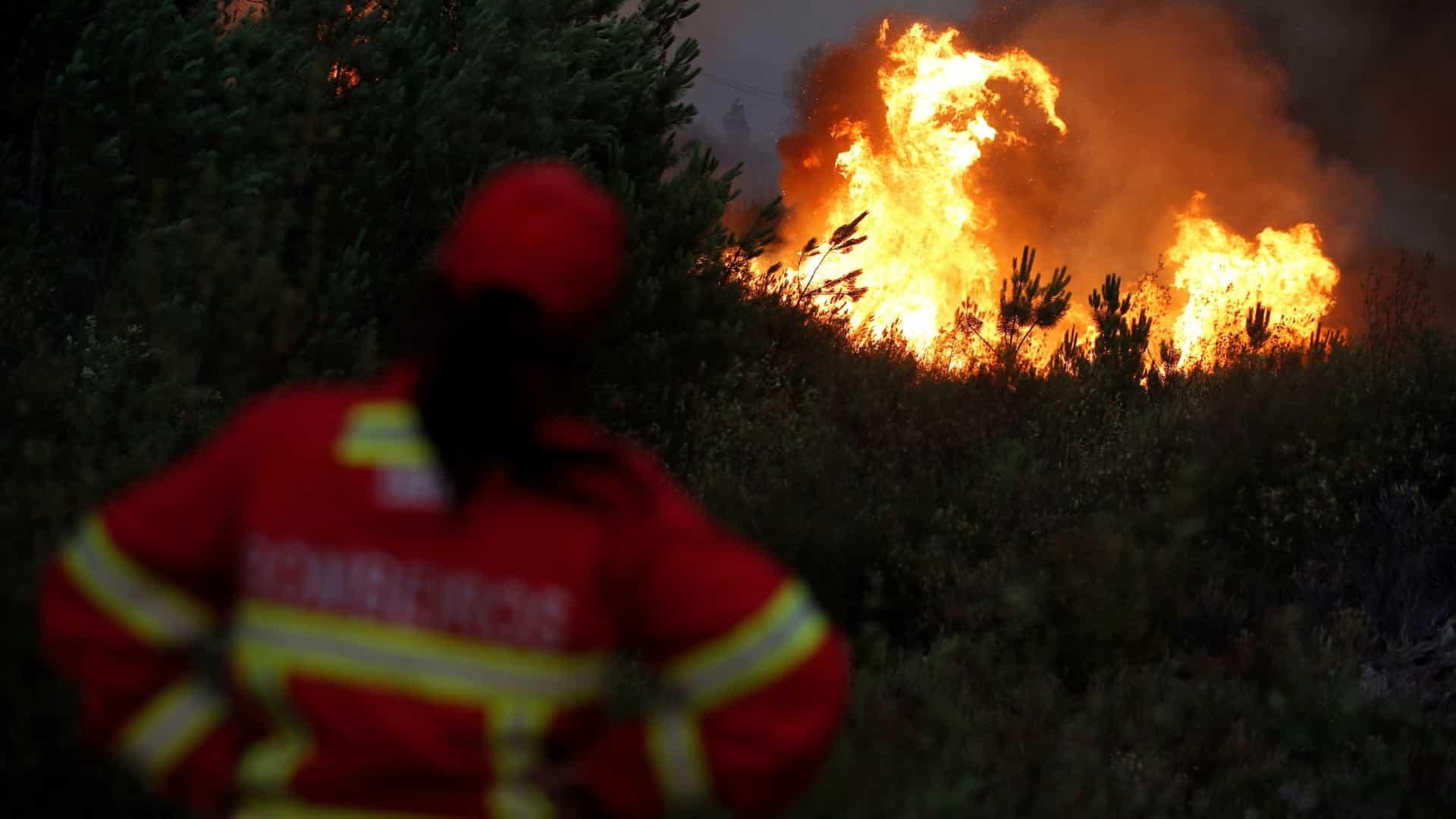 PJ detém desempregado por suspeita de atear fogos florestais em Celorico de Basto